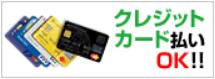 ビルトイン食洗機 取替え交換 費用 カード