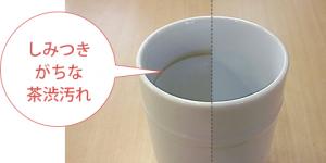 パナソニック食洗機 バイオパワー除菌洗浄 茶渋